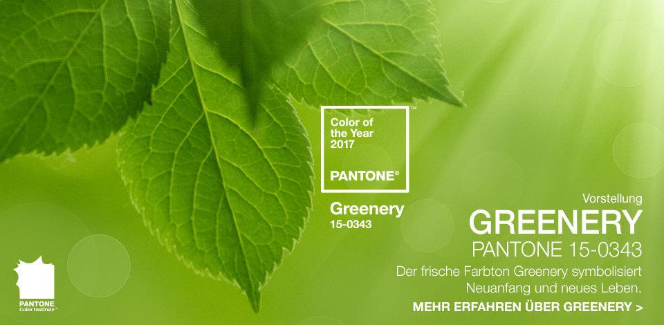 3 58494d54c69dc6.60701414 - Grüne Aussichten für 2017