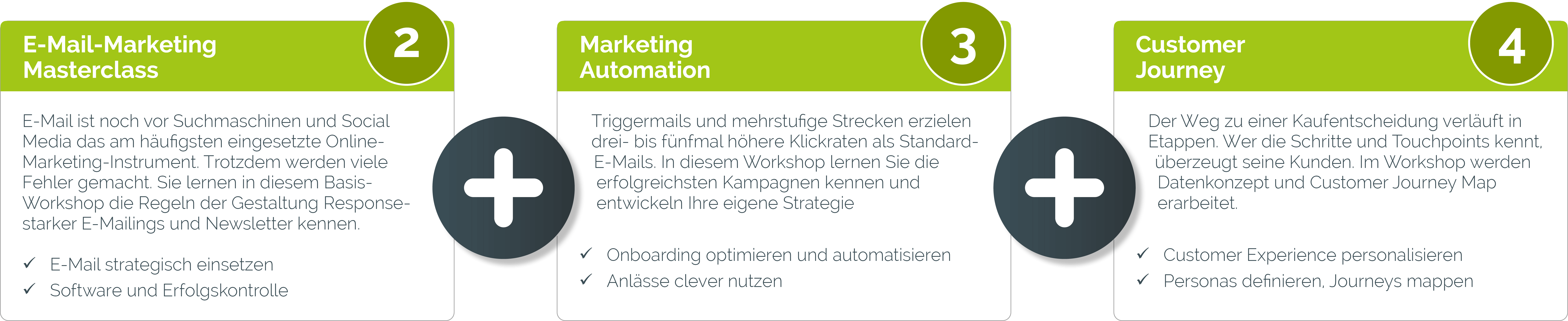 e mail marketing advanced bundle lang - Unsere Seminar-Pakete